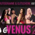 Big7 Liveshows auf der Venus 2017